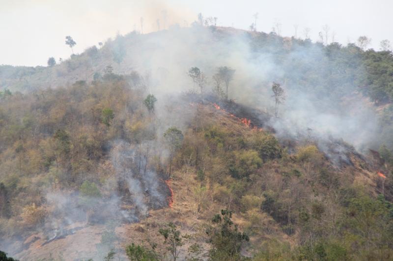 đốt rừng làm nương rẫy