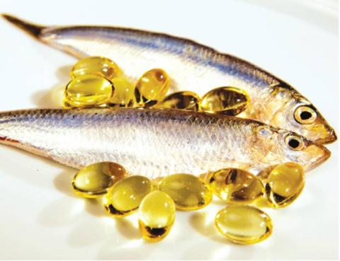 Cá và dầu cá giúp bổ sung chất nhờn cho khớp