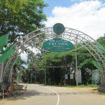 Vườn quốc gia Cát Tiên và khu rừng Nam Cát Tiên