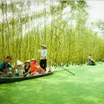 Rừng tràm Trà Sư có sự đa dạng sinh học và nhiều điểm du lịch