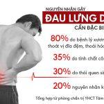 Đau lưng dưới gần mông và bí quyết chữa bệnh từ cây lá lốt
