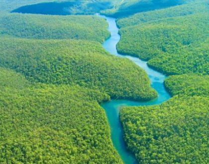rừng amazone nằm ở đâu