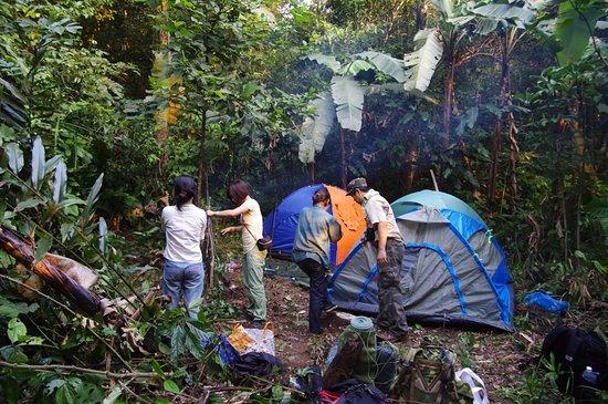 Du lịch vườn quốc gia Xuân Sơn