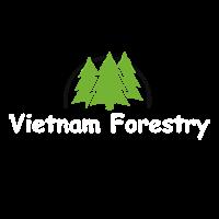 Việt Nam Forestry – Cổng thông tin sức khỏe 24h