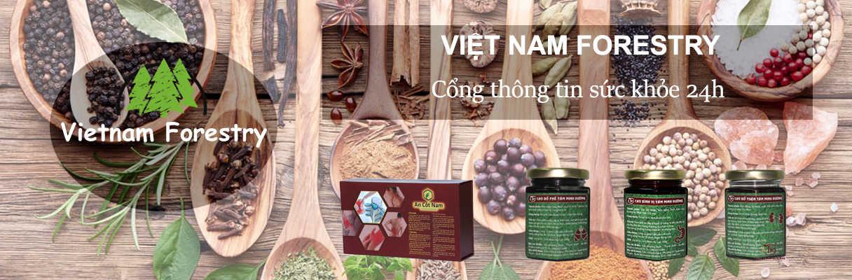 Vietnam Forestry