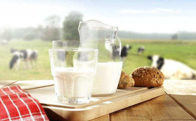 sữa dành cho người bị thoái hóa cột sống