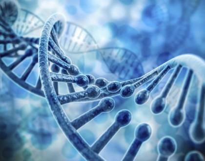 viêm khớp dạng thấp có di truyền không