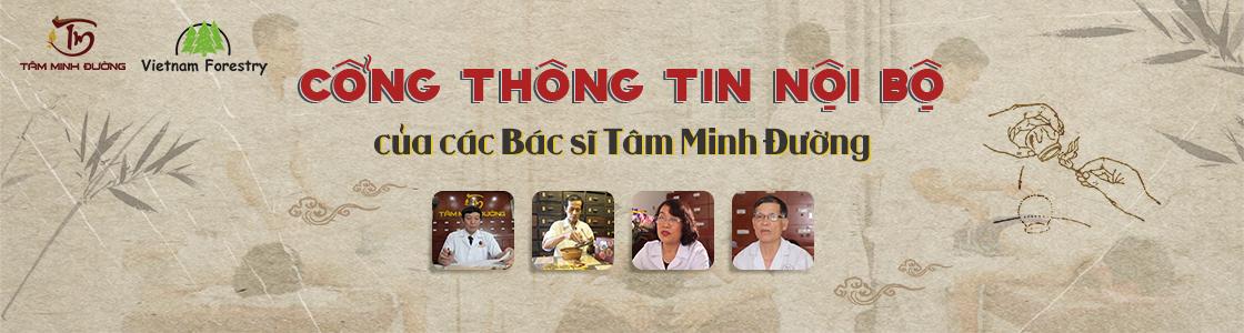 vietnamforestry banner
